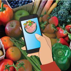 Graphic with hand holding cellphone with the Market logo on the phone