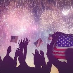 Fireworks in dark sky