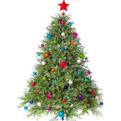 Annual Christmas Tree Lighting