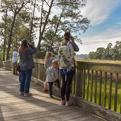 Bird Walks at Windsor Castle Park