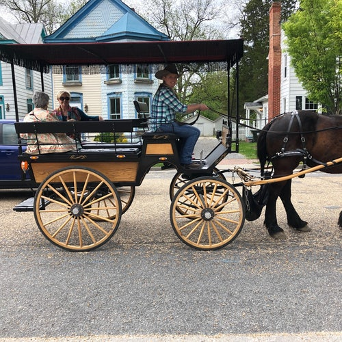 Carriage Rides through downtown Smithfield