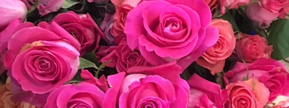 Fleur de Fou