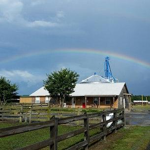 Windhaven Farm